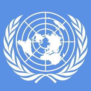 Corte Scrusa: vi ricordate gli avvocati svizzeri dell'ONU?