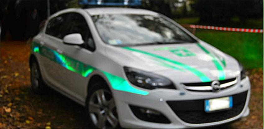 polizia locale auto e multe