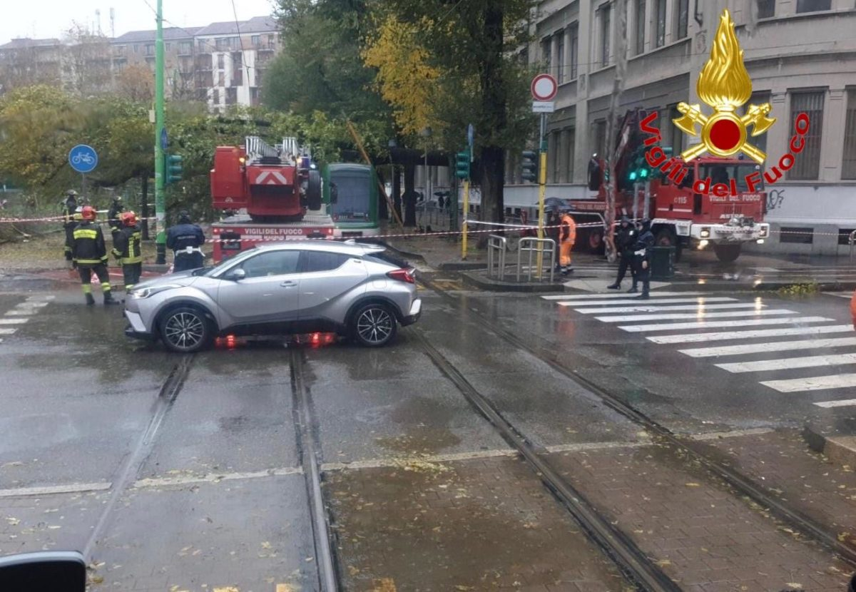 Milano - Milano. Albero su tram. Tanta paura ma nessun ferito 24/11/2019
