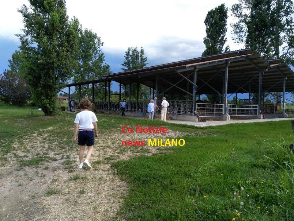 san rocco Magenta - San Rocco. Tante le perplessità dei visitatori. A Magenta 16/08/2020