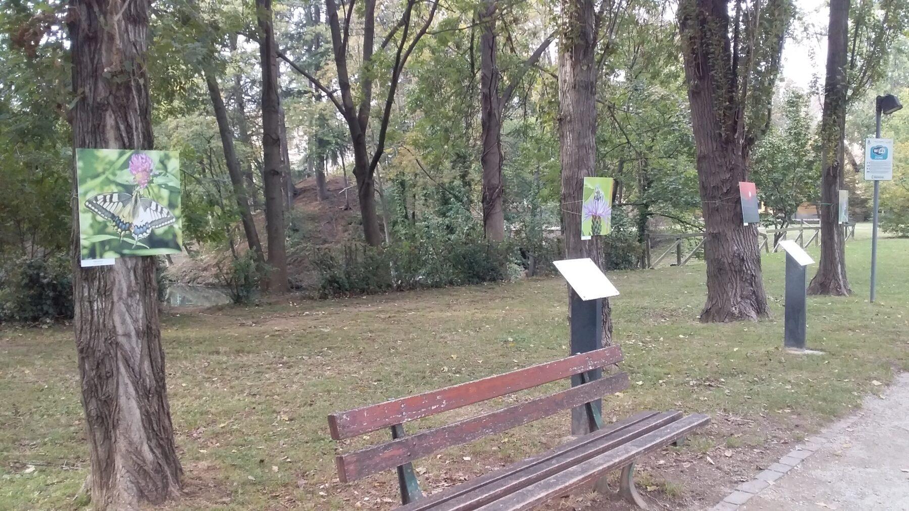 """Corbetta - """"Le Matite colorate"""" portano i paesaggi del nostro territorio in villa Ferrario. A Corbetta 09/10/2020"""