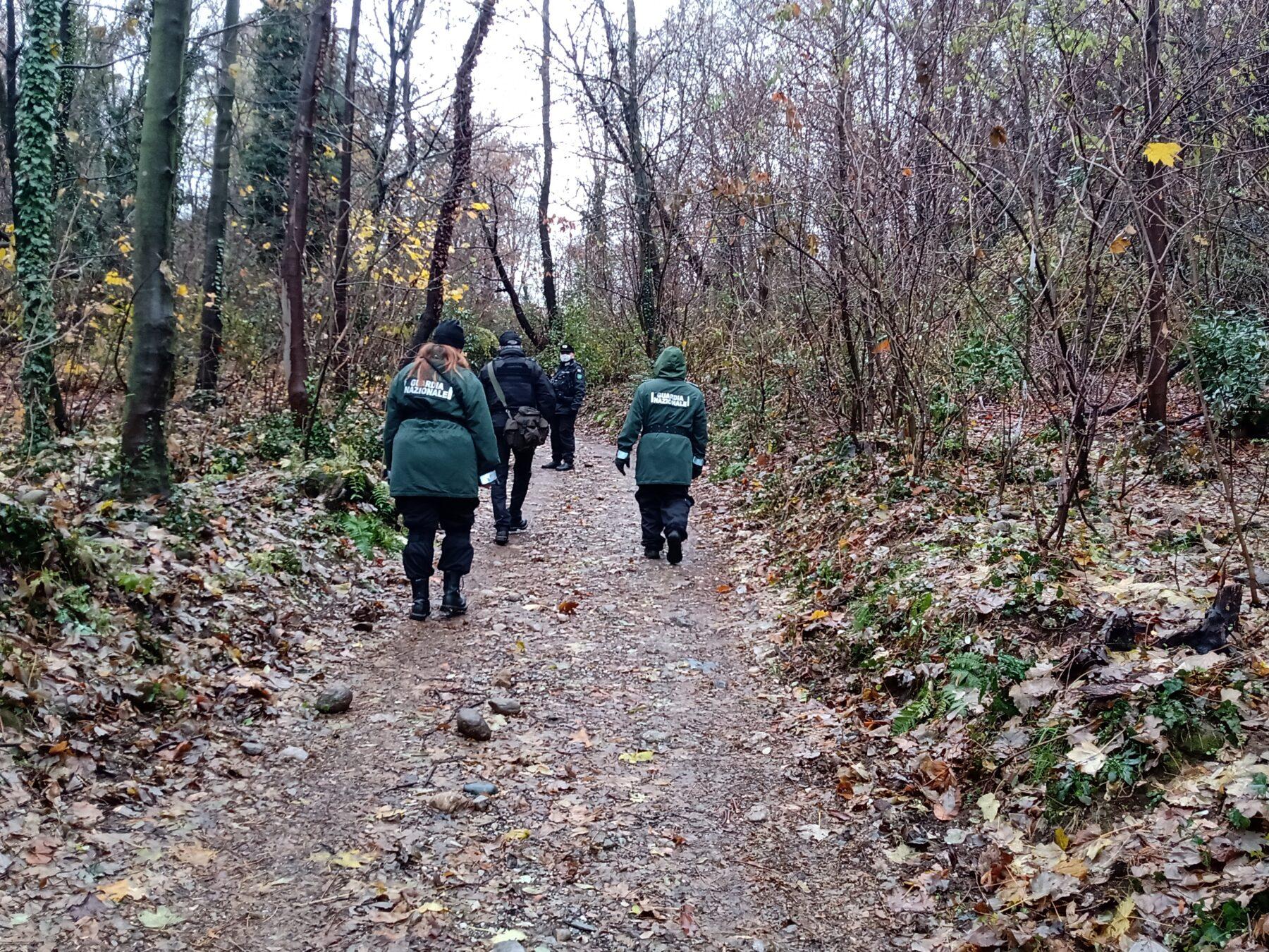 spina verde Ambiente - La Guardia Nazionale tra i boschi di Spina Verde (Como) 16/01/2021