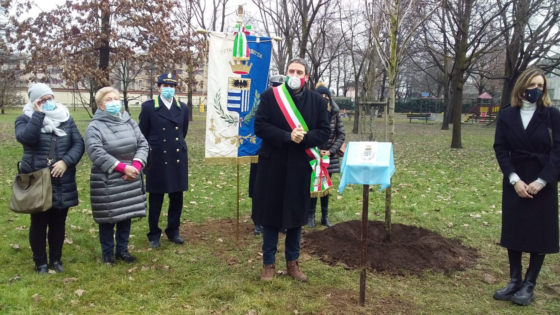 Corbetta - Un albero al parco a ricordo delle vittime Covid. Corbetta 04/02/2021