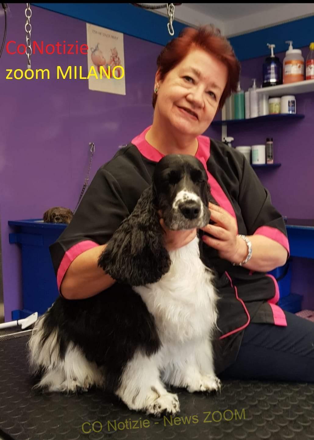 Corbetta - Coccole e cure per la toeletta dei nostri cagnolini. Opera Prima Style di Angela Ferrari, Corbetta 26/06/2021